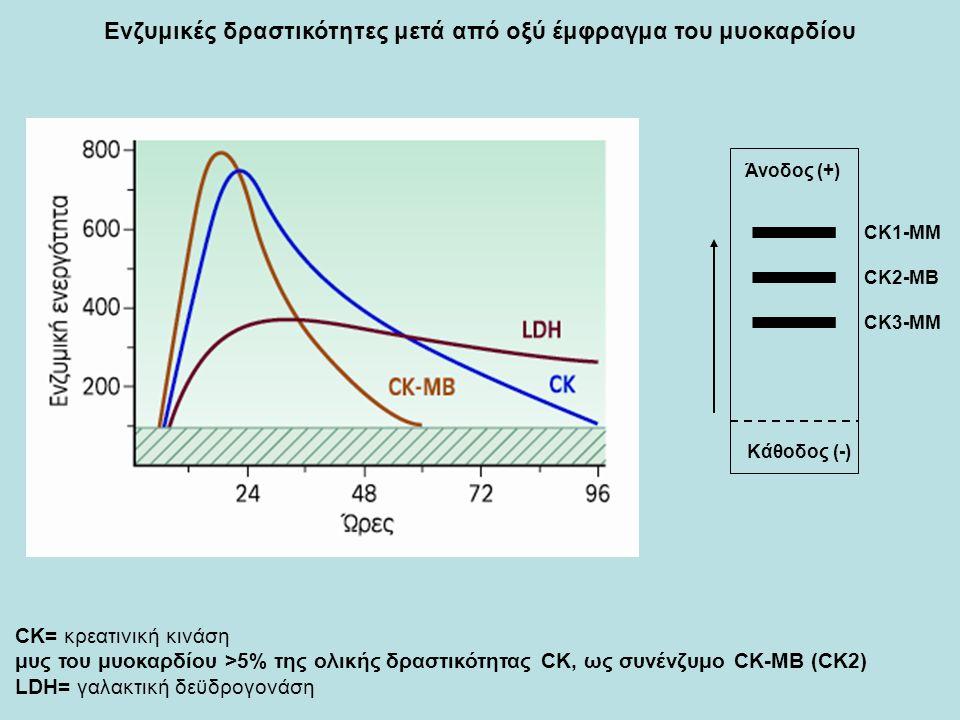 Ενζυμικές δραστικότητες μετά από οξύ έμφραγμα του μυοκαρδίου CK= κρεατινική κινάση μυς του μυοκαρδίου >5% της ολικής δραστικότητας CK, ως συνένζυμο CK-MB (CK2) LDH= γαλακτική δεϋδρογονάση Κάθοδος (-) Άνοδος (+) CK1-MM CK2-MB CK3-MM
