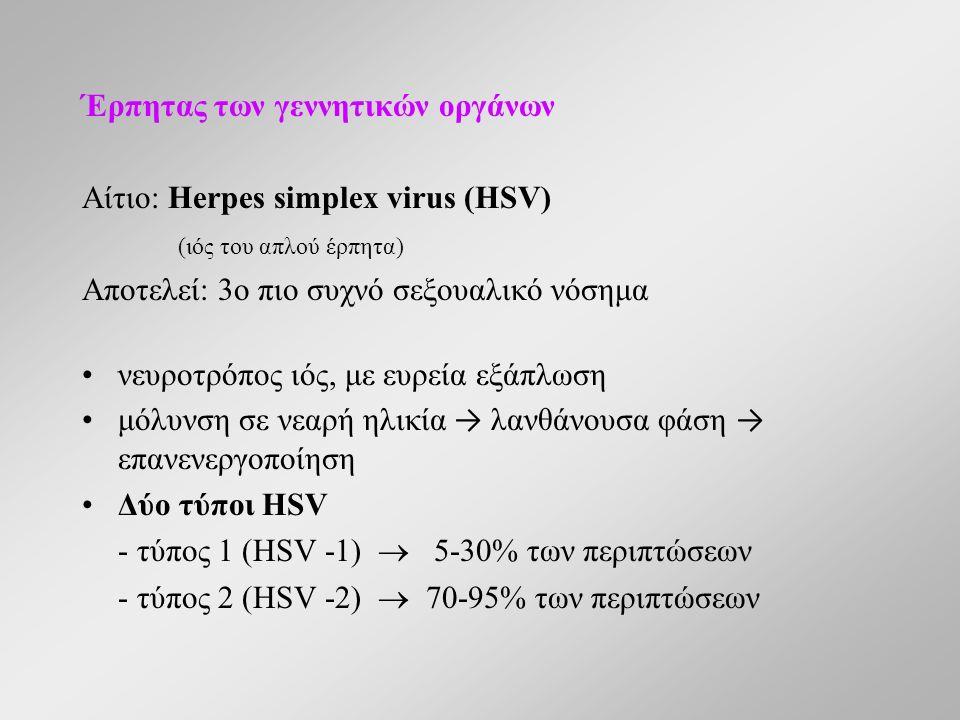 Έρπητας των γεννητικών οργάνων Αίτιο: Herpes simplex virus (HSV) (ιός του απλού έρπητα) Αποτελεί: 3ο πιο συχνό σεξουαλικό νόσημα νευροτρόπος ιός, με ευρεία εξάπλωση μόλυνση σε νεαρή ηλικία → λανθάνουσα φάση → επανενεργοποίηση Δύο τύποι HSV - τύπος 1 (HSV -1)  5-30% των περιπτώσεων - τύπος 2 (HSV -2)  70-95% των περιπτώσεων