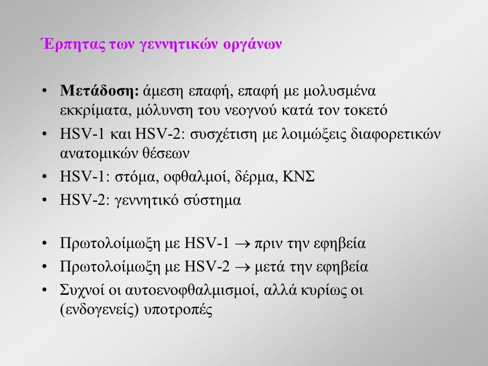 Έρπητας των γεννητικών οργάνων Μετάδοση: άμεση επαφή, επαφή με μολυσμένα εκκρίματα, μόλυνση του νεογνού κατά τον τοκετό HSV-1 και HSV-2: συσχέτιση με λοιμώξεις διαφορετικών ανατομικών θέσεων HSV-1: στόμα, οφθαλμοί, δέρμα, ΚΝΣ HSV-2: γεννητικό σύστημα Πρωτολοίμωξη με HSV-1  πριν την εφηβεία Πρωτολοίμωξη με HSV-2  μετά την εφηβεία Συχνοί οι αυτοενοφθαλμισμοί, αλλά κυρίως οι (ενδογενείς) υποτροπές