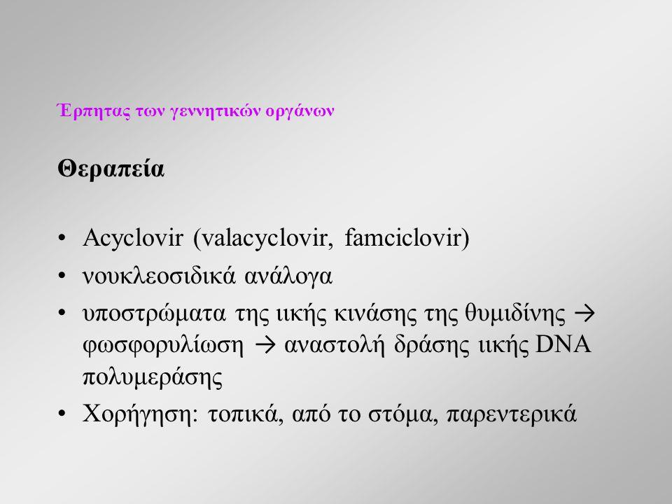 Έρπητας των γεννητικών οργάνων Θεραπεία Acyclovir (valacyclovir, famciclovir) νουκλεοσιδικά ανάλογα υποστρώματα της ιικής κινάσης της θυμιδίνης → φωσφορυλίωση → αναστολή δράσης ιικής DNA πολυμεράσης Χορήγηση: τοπικά, από το στόμα, παρεντερικά