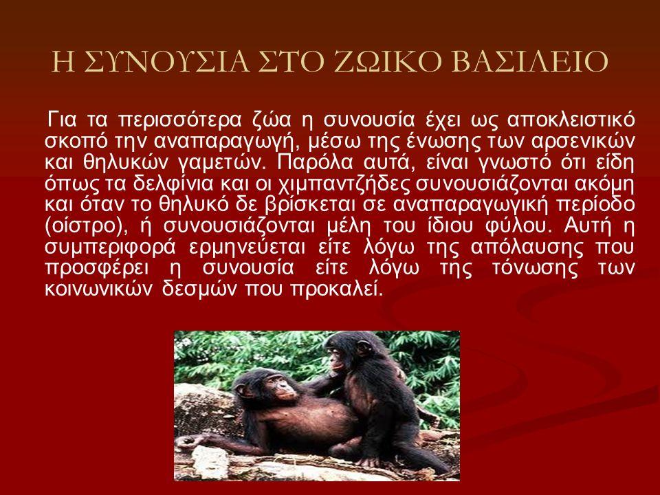 Η ΣΥΝΟΥΣΙΑ ΣΤΟ ΖΩΙΚΟ ΒΑΣΙΛΕΙΟ Για τα περισσότερα ζώα η συνουσία έχει ως αποκλειστικό σκοπό την αναπαραγωγή, μέσω της ένωσης των αρσενικών και θηλυκών