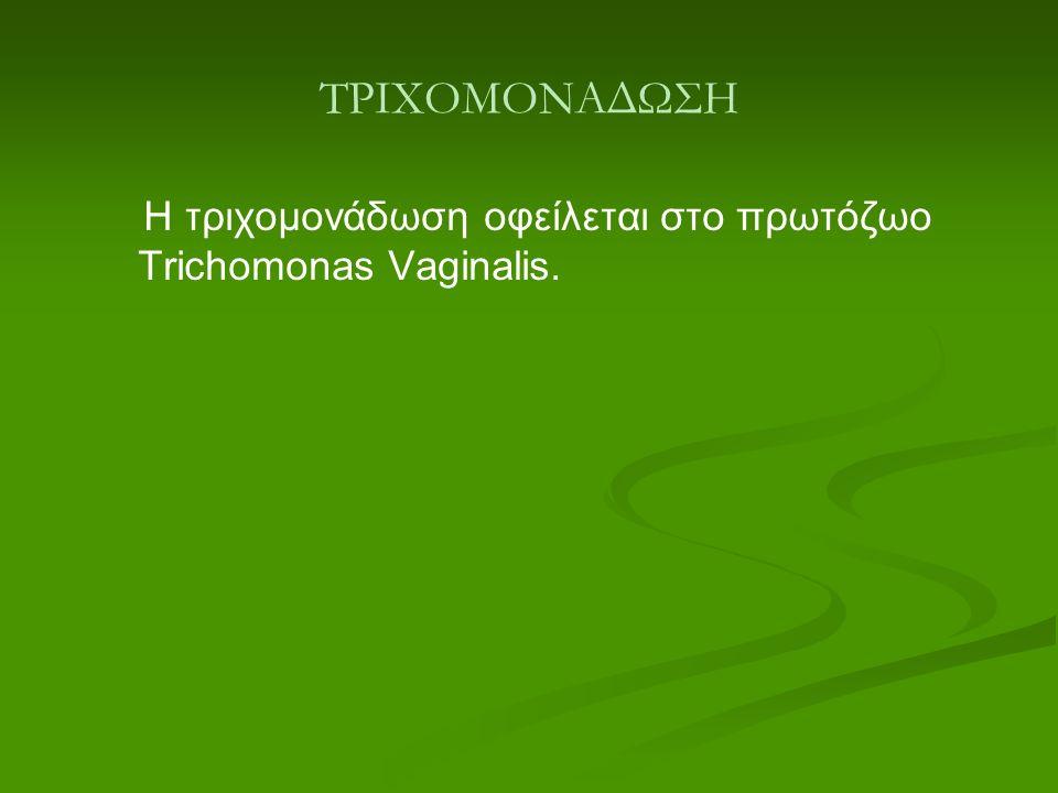 ΤΡΙΧΟΜΟΝΑΔΩΣΗ Η τριχομονάδωση οφείλεται στο πρωτόζωο Trichomonas Vaginalis.