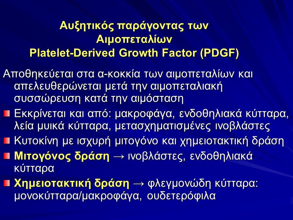 Αυξητικός παράγοντας των Αιμοπεταλίων Platelet-Derived Growth Factor (PDGF) Αποθηκεύεται στα α-κοκκία των αιμοπεταλίων και απελευθερώνεται μετά την αιμοπεταλιακή συσσώρευση κατά την αιμόσταση Εκκρίνεται και από: μακροφάγα, ενδοθηλιακά κύτταρα, λεία μυικά κύτταρα, μετασχηματισμένες ινοβλάστες Κυτοκίνη με ισχυρή μιτογόνο και χημειοτακτική δράση Μιτογόνος δράση → ινοβλάστες, ενδοθηλιακά κύτταρα Χημειοτακτική δράση → φλεγμονώδη κύτταρα: μονοκύτταρα/μακροφάγα, ουδετερόφιλα