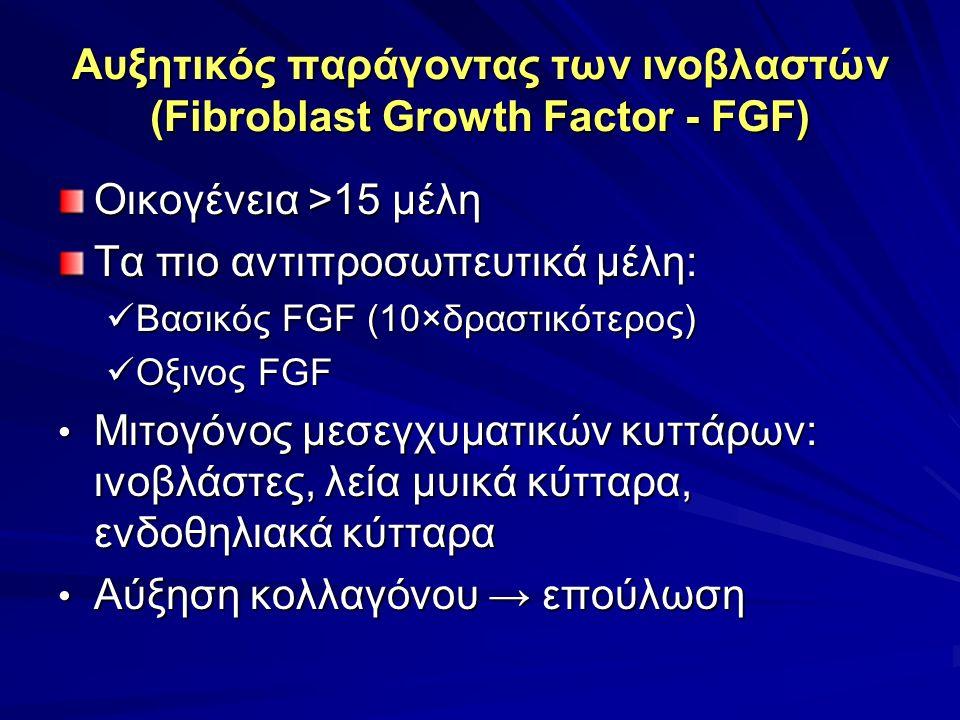 Αυξητικός παράγοντας των ινοβλαστών (Fibroblast Growth Factor - FGF) Oικογένεια >15 μέλη Τα πιο αντιπροσωπευτικά μέλη: Βασικός FGF (10×δραστικότερος) Βασικός FGF (10×δραστικότερος) Οξινος FGF Οξινος FGF Μιτογόνος μεσεγχυματικών κυττάρων: ινοβλάστες, λεία μυικά κύτταρα, ενδοθηλιακά κύτταρα Μιτογόνος μεσεγχυματικών κυττάρων: ινοβλάστες, λεία μυικά κύτταρα, ενδοθηλιακά κύτταρα Αύξηση κολλαγόνου → επούλωση Αύξηση κολλαγόνου → επούλωση