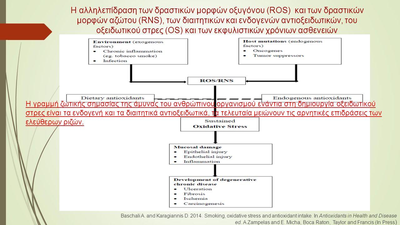 Η αλληλεπίδραση των δραστικών μορφών οξυγόνου (ROS) και των δραστικών μορφών αζώτου (RNS), των διαιτητικών και ενδογενών αντιοξειδωτικών, του οξειδωτικού στρες (OS) και των εκφυλιστικών χρόνιων ασθενειών Baschali A.