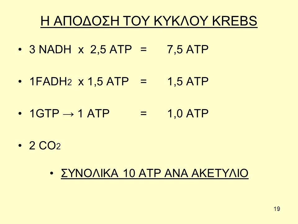 19 Η ΑΠΟΔΟΣΗ ΤΟΥ ΚΥΚΛΟΥ KREBS 3 NADH x 2,5 ATP =7,5 ATP 1FADH 2 x 1,5 ATP =1,5 ATP 1GTP → 1 ATP =1,0 ATP 2 CO 2 ΣΥΝΟΛΙΚΑ 10 ΑΤP ΑΝΑ ΑΚΕΤΥΛΙΟ