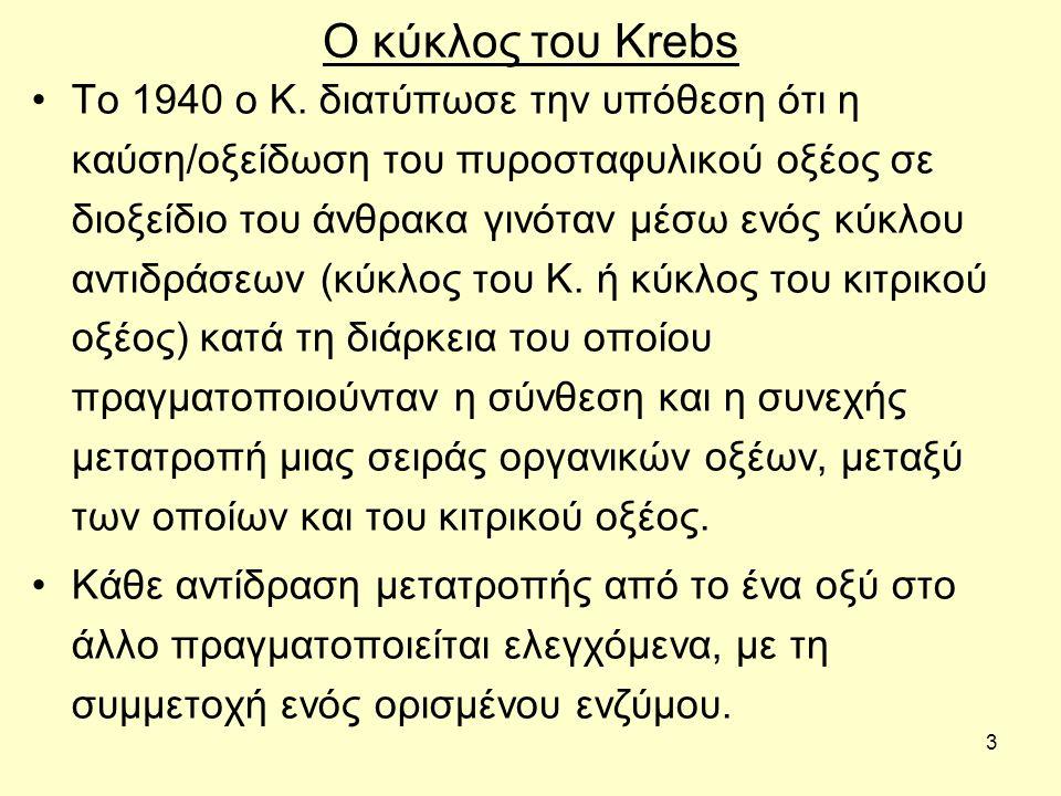 3 Ο κύκλος του Krebs Το 1940 ο Κ. διατύπωσε την υπόθεση ότι η καύση/οξείδωση του πυροσταφυλικού οξέος σε διοξείδιο του άνθρακα γινόταν μέσω ενός κύκλο