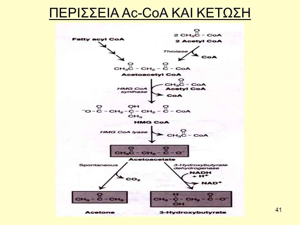 41 ΠΕΡΙΣΣΕΙΑ Ac-CoA ΚΑΙ ΚΕΤΩΣΗ