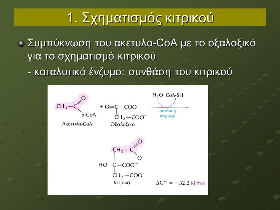 1. Σχηματισμός κιτρικού Συμπύκνωση του ακετυλο-CoA με το οξαλοξικό για το σχηματισμό κιτρικού - καταλυτικό ένζυμο: συνθάση του κιτρικού