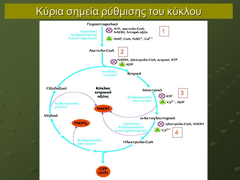 Κύρια σημεία ρύθμισης του κύκλου 1 2 3 4
