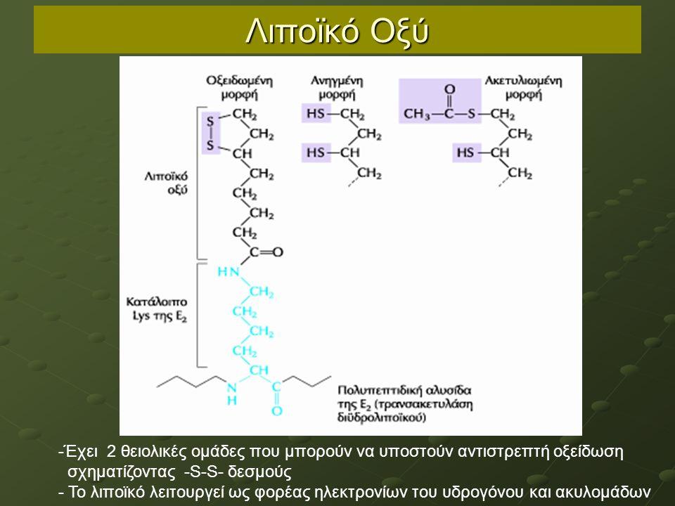 Λιποϊκό Οξύ -Έχει 2 θειολικές ομάδες που μπορούν να υποστούν αντιστρεπτή οξείδωση σχηματίζοντας -S-S- δεσμούς - Το λιποϊκό λειτουργεί ως φορέας ηλεκτρονίων του υδρογόνου και ακυλομάδων