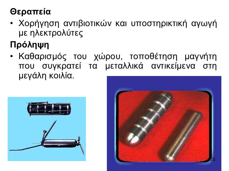 Θεραπεία Χορήγηση αντιβιοτικών και υποστηρικτική αγωγή με ηλεκτρολύτες Πρόληψη Καθαρισμός του χώρου, τοποθέτηση μαγνήτη που συγκρατεί τα μεταλλικά αντικείμενα στη μεγάλη κοιλία.