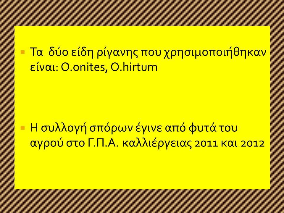  Τα δύο είδη ρίγανης που χρησιμοποιήθηκαν είναι: Ο.onites, O.hirtum  Η συλλογή σπόρων έγινε από φυτά του αγρού στο Γ.Π.Α.