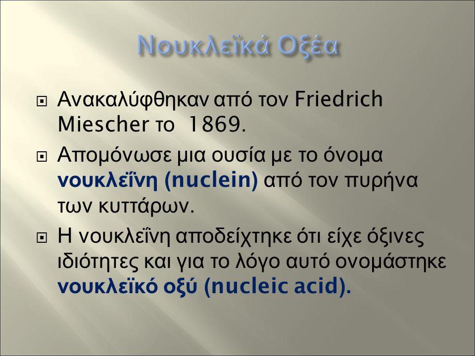  Ανακαλύφθηκαν από τον Friedrich Miescher το 1869.