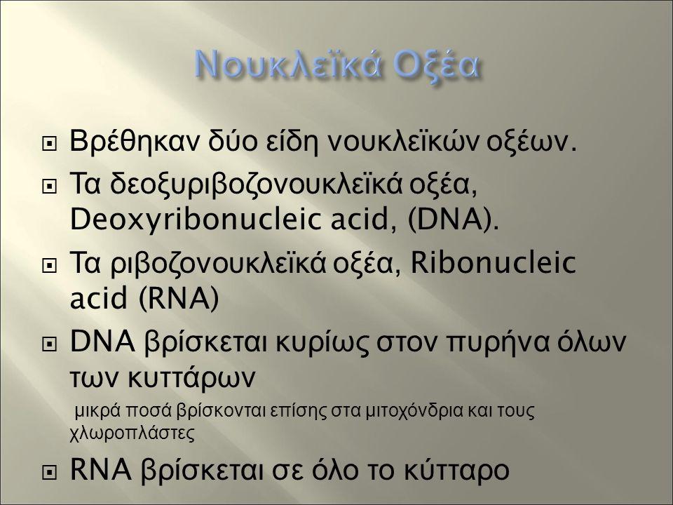  Βρέθηκαν δύο είδη νουκλεϊκών οξέων.  Τα δεοξυριβοζονουκλεϊκά οξέα, Deoxyribonucleic acid, (DNA).