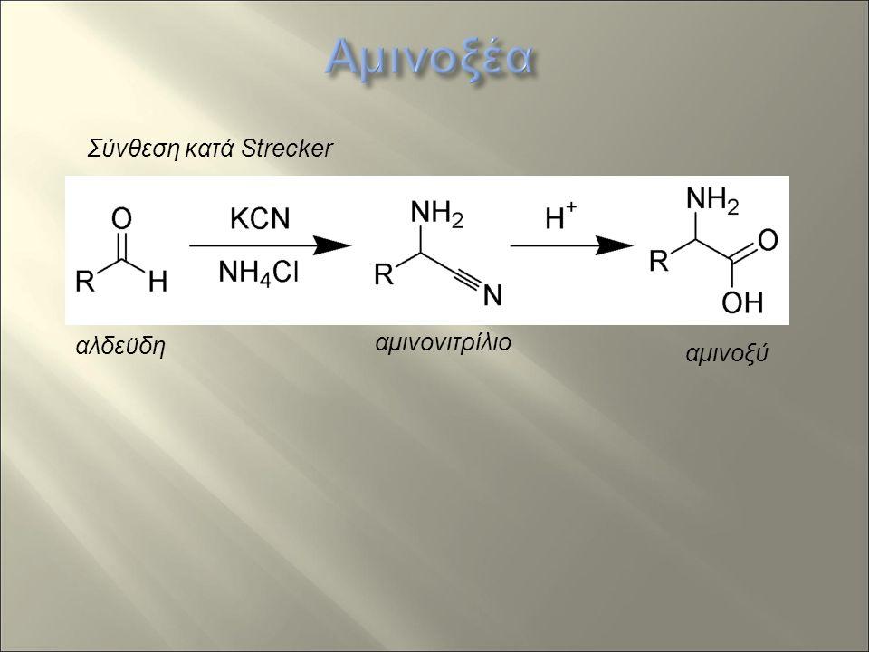 Σύνθεση κατά Strecker αλδεϋδη αμινονιτρίλιο αμινοξύ
