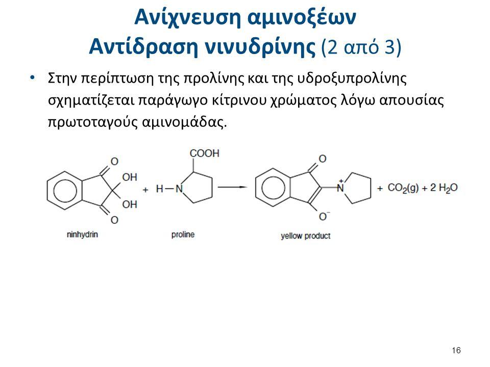 Ανίχνευση αμινοξέων Αντίδραση νινυδρίνης (2 από 3) Στην περίπτωση της προλίνης και της υδροξυπρολίνης σχηματίζεται παράγωγο κίτρινου χρώματος λόγω απουσίας πρωτοταγούς αμινομάδας.