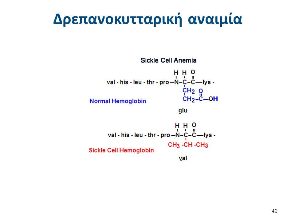 Δρεπανοκυτταρική αναιμία 40