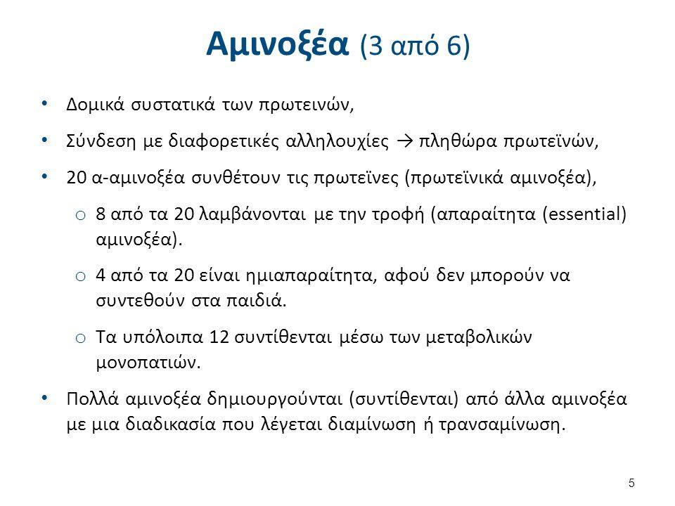Αμινοξέα (3 από 6) Δομικά συστατικά των πρωτεινών, Σύνδεση με διαφορετικές αλληλουχίες → πληθώρα πρωτεϊνών, 20 α-αμινοξέα συνθέτουν τις πρωτεϊνες (πρωτεϊνικά αμινοξέα), o 8 από τα 20 λαμβάνονται με την τροφή (απαραίτητα (essential) αμινοξέα).