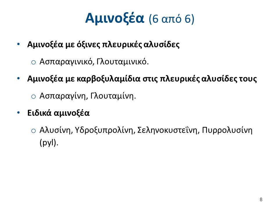Αμινοξέα (6 από 6) Αμινοξέα με όξινες πλευρικές αλυσίδες o Ασπαραγινικό, Γλουταμινικό.