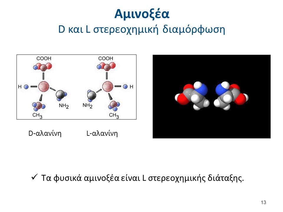 Αμινοξέα D και L στερεοχημική διαμόρφωση L-αλανίνη Τα φυσικά αμινοξέα είναι L στερεοχημικής διάταξης. D-αλανίνη 13