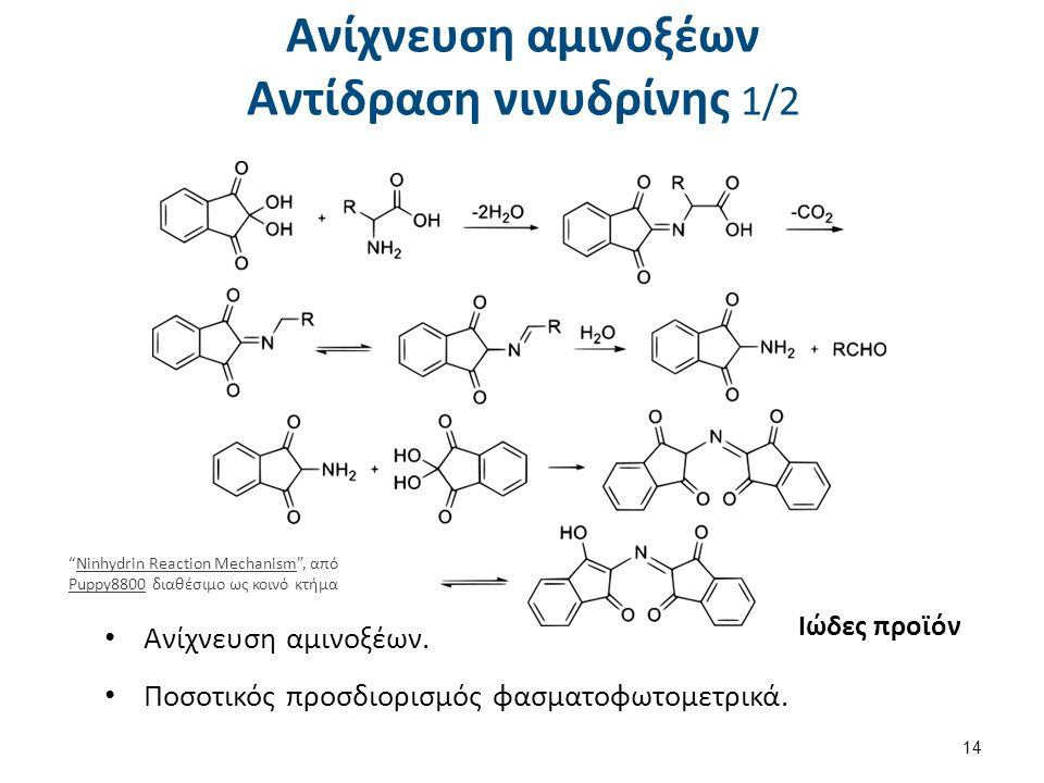 """Ανίχνευση αμινοξέων Αντίδραση νινυδρίνης 1/2 Ανίχνευση αμινοξέων. Ποσοτικός προσδιορισμός φασματοφωτομετρικά. Ιώδες προϊόν 14 """"Ninhydrin Reaction Mech"""