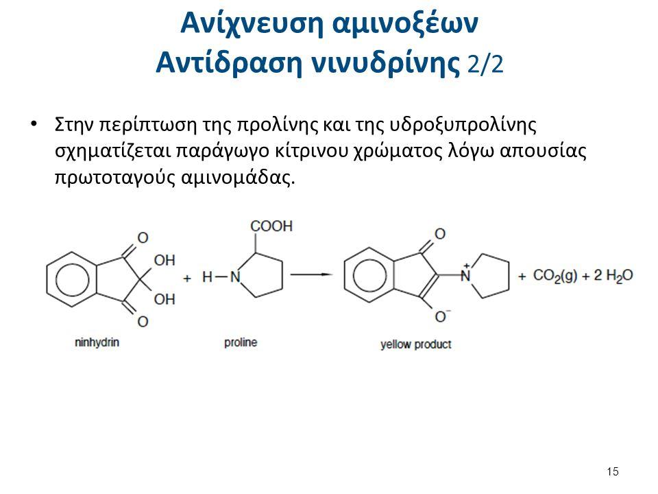 Ανίχνευση αμινοξέων Αντίδραση νινυδρίνης 2/2 Στην περίπτωση της προλίνης και της υδροξυπρολίνης σχηματίζεται παράγωγο κίτρινου χρώματος λόγω απουσίας