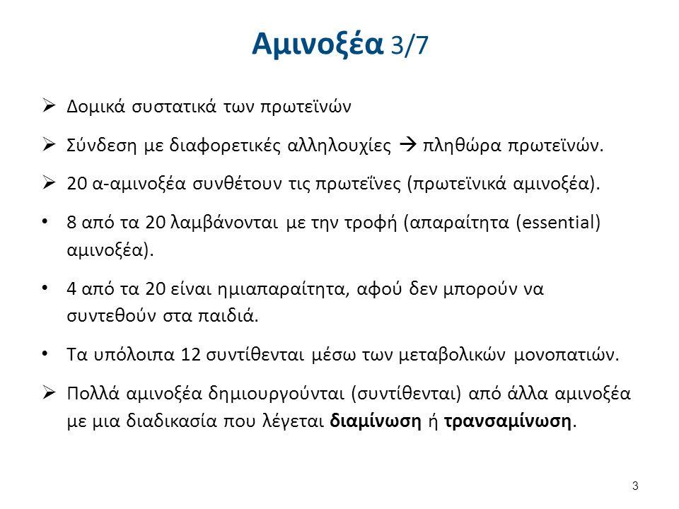 Αμινοξέα 4/7 Σύνθεση κατά Strecker αλδεϋδη αμινονιτρίλιο αμινοξύ 4