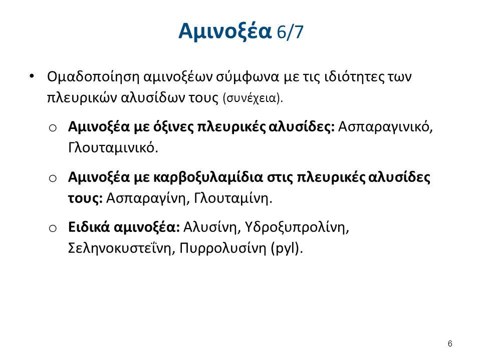 Αμινοξέα 6/7 Ομαδοποίηση αμινοξέων σύμφωνα με τις ιδιότητες των πλευρικών αλυσίδων τους (συνέχεια). o Αμινοξέα με όξινες πλευρικές αλυσίδες: Ασπαραγιν