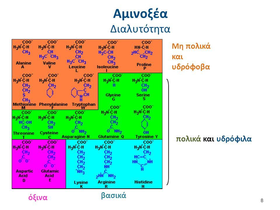 Αμινοξέα Οξεοβασική συμπεριφορά 1/2 pH > pKα της καρβοξυλικής ομάδας (pKα ~ 2,2)  -COO - pH < pKα της αμινομάδας (pKα ~ 9,4)  -ΝΗ 3 + 2,2 < pH < 9,4  διπολικό ιόν ή εσωτερικό άλας (zwitterion) pH < 2,2  -ΝΗ 3 + pH > 9,4  -COO- Άρα… 9