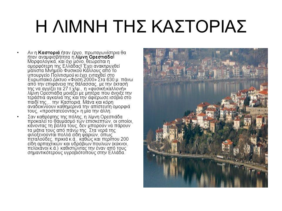 Η ΛΙΜΝΗ ΤΗΣ ΚΑΣΤΟΡΙΑΣ Αν η Καστοριά ήταν έργο, πρωταγωνίστρια θα ήταν αναμφισβήτητα η λίμνη Ορεστιάδα.