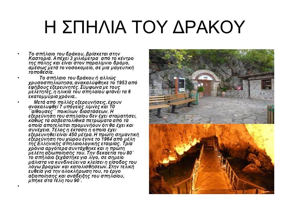 Η ΣΠΗΛΙΑ ΤΟΥ ΔΡΑΚΟΥ Το σπήλαιο του δράκου, βρίσκεται στην Καστοριά.