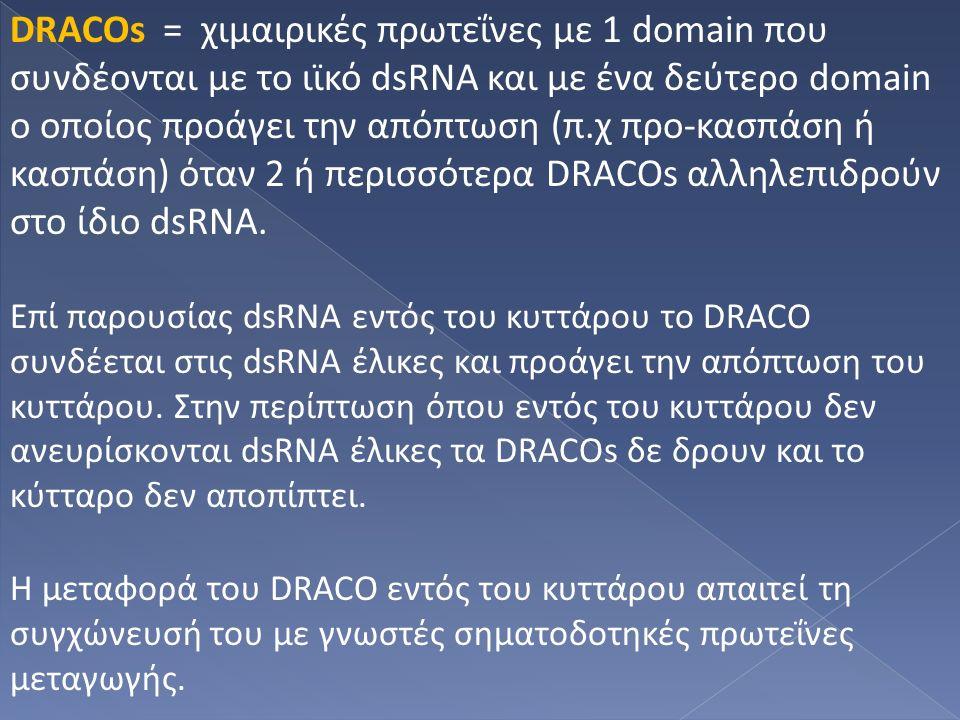 DRACOs = χιμαιρικές πρωτεΐνες με 1 domain που συνδέονται με το ιϊκό dsRNA και με ένα δεύτερο domain ο οποίος προάγει την απόπτωση (π.χ προ-κασπάση ή κασπάση) όταν 2 ή περισσότερα DRACOs αλληλεπιδρούν στο ίδιο dsRNA.