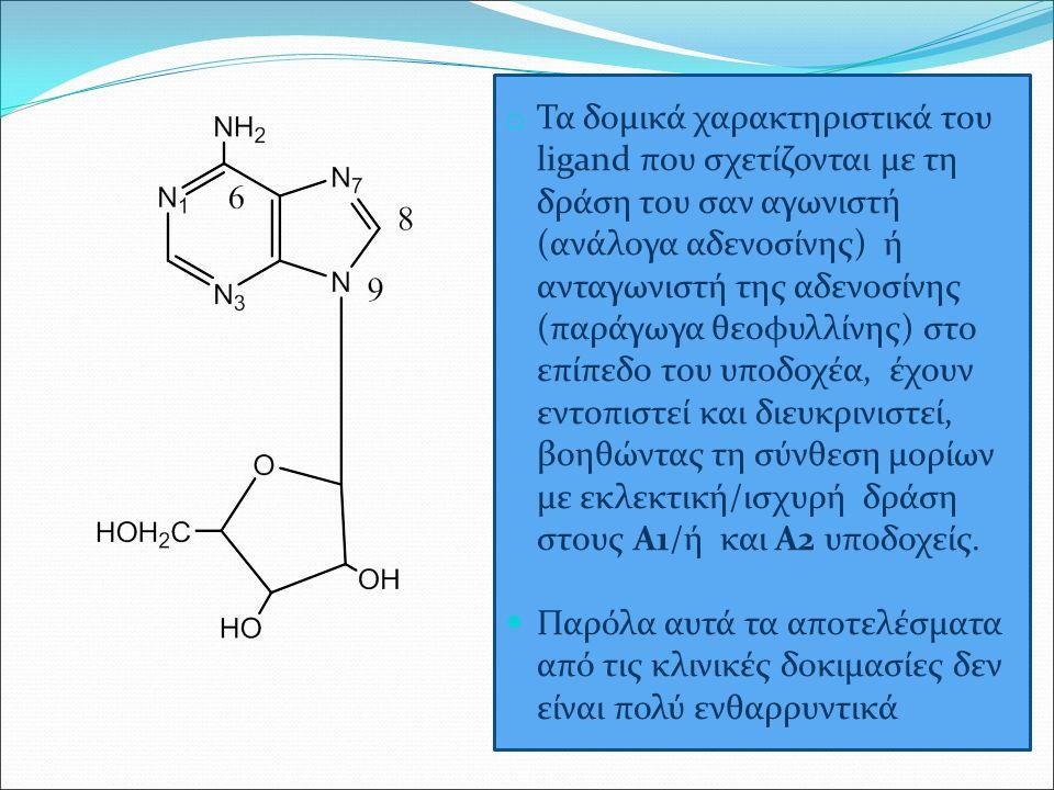 o Τα δομικά χαρακτηριστικά του ligand που σχετίζονται με τη δράση του σαν αγωνιστή (ανάλογα αδενοσίνης) ή ανταγωνιστή της αδενοσίνης (παράγωγα θεοφυλλίνης) στο επίπεδο του υποδοχέα, έχουν εντοπιστεί και διευκρινιστεί, βοηθώντας τη σύνθεση μορίων με εκλεκτική/ισχυρή δράση στους Α1/ή και Α2 υποδοχείς.