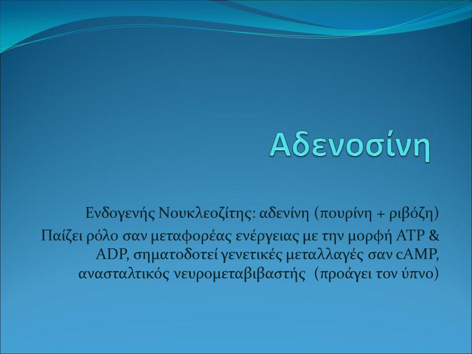Ενδογενής Νουκλεοζίτης: αδενίνη (πουρίνη + ριβόζη) Παίζει ρόλο σαν μεταφορέας ενέργειας με την μορφή ATP & ADP, σηματοδοτεί γενετικές μεταλλαγές σαν cAMP, ανασταλτικός νευρομεταβιβαστής (προάγει τον ύπνο)