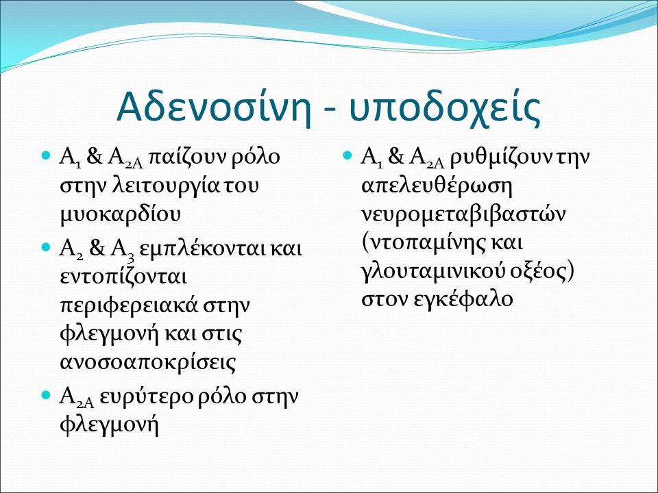Αδενοσίνη - υποδοχείς Α 1 & Α 2Α παίζουν ρόλο στην λειτουργία του μυοκαρδίου Α 2 & Α 3 εμπλέκονται και εντοπίζονται περιφερειακά στην φλεγμονή και στις ανοσοαποκρίσεις Α 2Α ευρύτερο ρόλο στην φλεγμονή Α 1 & Α 2Α ρυθμίζουν την απελευθέρωση νευρομεταβιβαστών (ντοπαμίνης και γλουταμινικού οξέος) στον εγκέφαλο