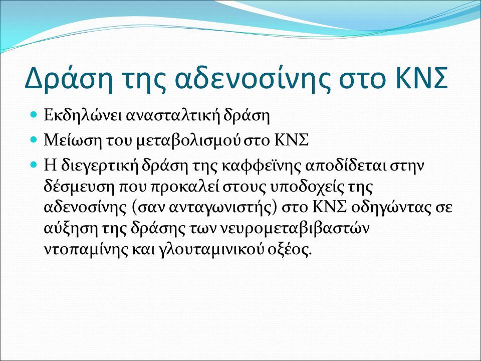 Δράση της αδενοσίνης στο ΚΝΣ Εκδηλώνει ανασταλτική δράση Μείωση του μεταβολισμού στο ΚΝΣ Η διεγερτική δράση της καφφεϊνης αποδίδεται στην δέσμευση που προκαλεί στους υποδοχείς της αδενοσίνης (σαν ανταγωνιστής) στο ΚΝΣ οδηγώντας σε αύξηση της δράσης των νευρομεταβιβαστών ντοπαμίνης και γλουταμινικού οξέος.