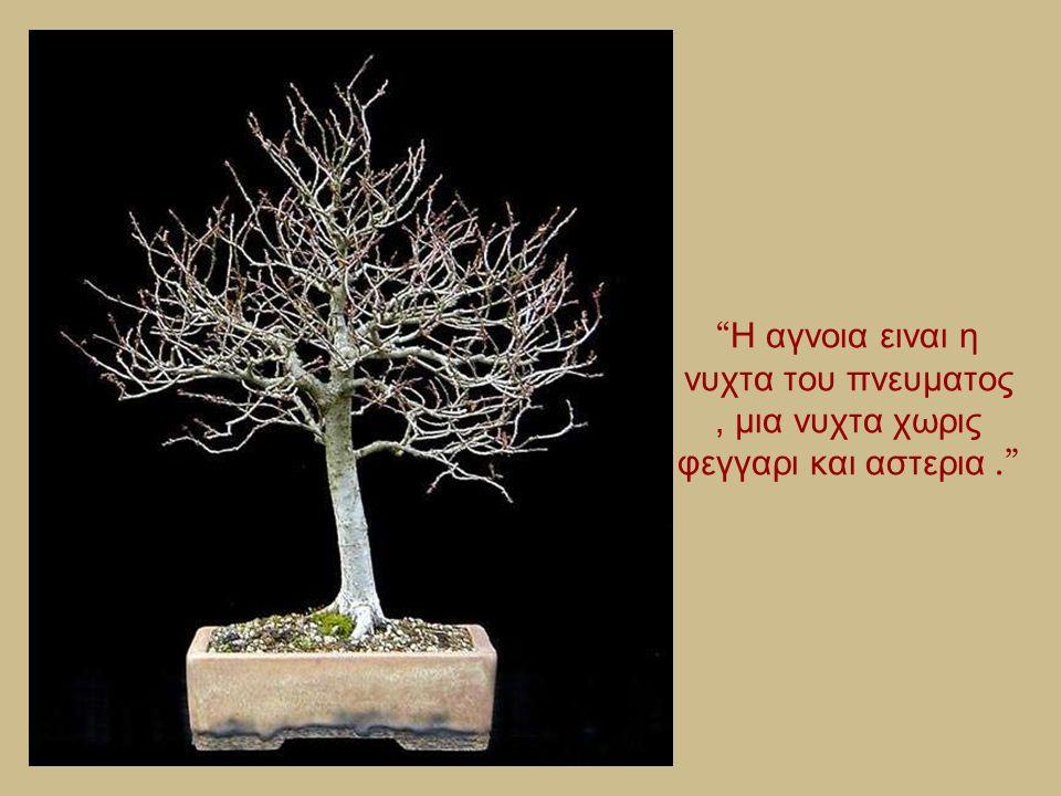 """"""" Υπαρχουν ανθρωποι που κλενε οταν μαθουν οτι τα τριανταφυλλα εχουν αγκαθια και αλλοι χαιρονται οταν μαθουν οτι τα αγκαθια εχουν τριανταφυλλα."""""""