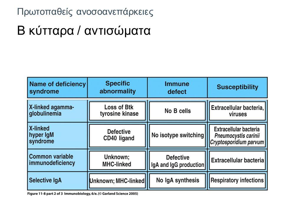 Πρωτοπαθείς ανοσοανεπάρκειες Β κύτταρα / αντισώματα