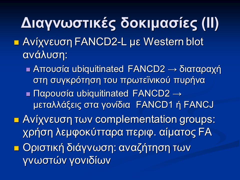 Διαγνωστικές δοκιμασίες (ΙΙ) Ανίχνευση FANCD2-L με Western blot ανάλυση: Ανίχνευση FANCD2-L με Western blot ανάλυση: Απουσία ubiquitinated FANCD2 → διαταραχή στη συγκρότηση του πρωτεϊνικού πυρήνα Απουσία ubiquitinated FANCD2 → διαταραχή στη συγκρότηση του πρωτεϊνικού πυρήνα Παρουσία ubiquitinated FANCD2 → μεταλλάξεις στα γονίδια FANCD1 ή FANCJ Παρουσία ubiquitinated FANCD2 → μεταλλάξεις στα γονίδια FANCD1 ή FANCJ Ανίχνευση των complementation groups: χρήση λεμφοκύτταρα περιφ.