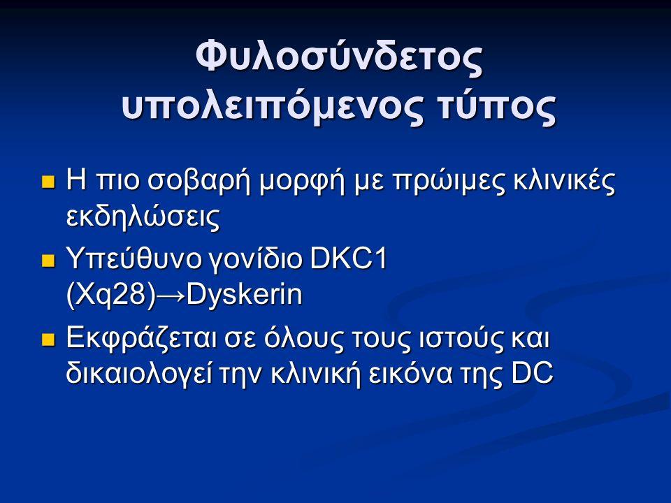 Φυλοσύνδετος υπολειπόμενος τύπος Η πιο σοβαρή μορφή με πρώιμες κλινικές εκδηλώσεις Η πιο σοβαρή μορφή με πρώιμες κλινικές εκδηλώσεις Υπεύθυνο γονίδιο DKC1 (Xq28)→Dyskerin Υπεύθυνο γονίδιο DKC1 (Xq28)→Dyskerin Εκφράζεται σε όλους τους ιστούς και δικαιολογεί την κλινική εικόνα της DC Εκφράζεται σε όλους τους ιστούς και δικαιολογεί την κλινική εικόνα της DC