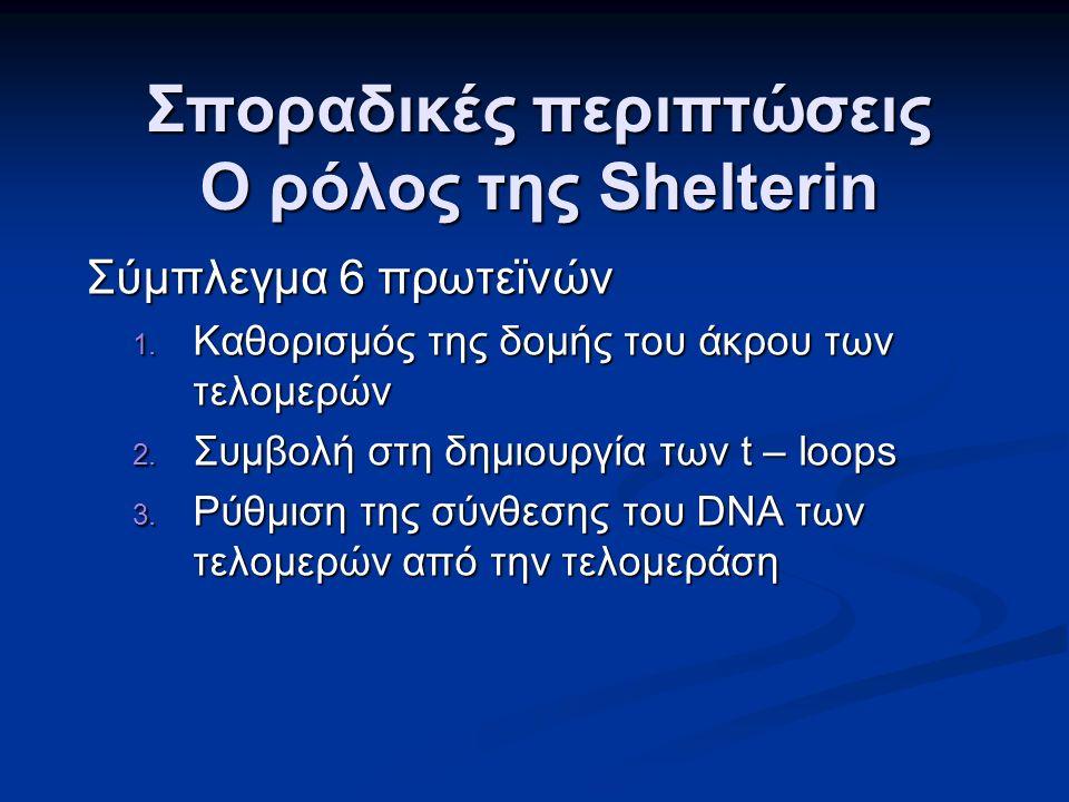 Σποραδικές περιπτώσεις Ο ρόλος της Shelterin Σύμπλεγμα 6 πρωτεϊνών 1.