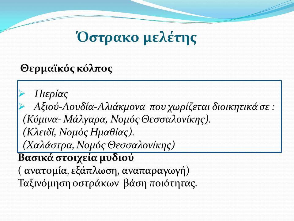 Όστρακο μελέτης Θερμαϊκός κόλπος  Πιερίας  Αξιού-Λουδία-Αλιάκμονα που χωρίζεται διοικητικά σε : (Κύμινα- Μάλγαρα, Νομός Θεσσαλονίκης).
