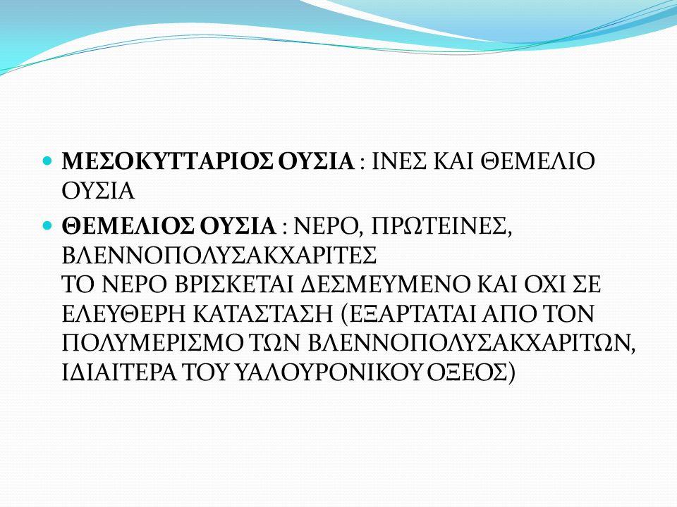 ΠΡΩΤΕΙΝΕΣ ΤΟΥ ΣΥΝΔΕΤΙΚΟΥ ΙΣΤΟΥ ΚΟΛΛΑΓΟΝΟ: ΔΟΜΙΚΗ ΠΡΩΤΕΙΝΗ ΔΡΑ ΣΑΝ ΠΛΕΓΜΑ ΣΤΗΡΙΞΗΣ ΣΤΟ ΣΩΜΑ ΑΔΙΑΛΥΤΟ ΣΤΟ ΝΕΡΟ, ΜΕΤΑΤΡΕΠΕΤΑΙ ΣΕ ΕΥΔΙΑΛΥΤΗ ΜΑΖΑ (ΖΕΛΑΤΙΝΗ) ΟΤΑΝ ΘΕΡΜΑΝΘΕΙ ΕΛΑΣΤΙΝΗ: ΔΕΥΤΕΡΗ ΠΙΟ ΣΗΜΑΝΤΙΚΗ ΔΟΜΙΚΗ ΠΡΩΤΕΙΝΗ ΕΙΝΑΙ ΕΛΑΣΤΙΚΗ ΚΑΙ ΑΠΑΝΤΑΤΑΙ ΣΕ ΜΕΓΑΛΟ ΒΑΘΜΟ ΣΤΑ ΤΟΙΧΩΜΑΤΑ ΤΩΝ ΑΓΓΕΙΩΝ ΕΠΙΤΡΕΠΟΝΤΑΣ ΤΟΥΣ ΤΗ ΔΙΑΤΑΣΗ ΤΟΥΣ