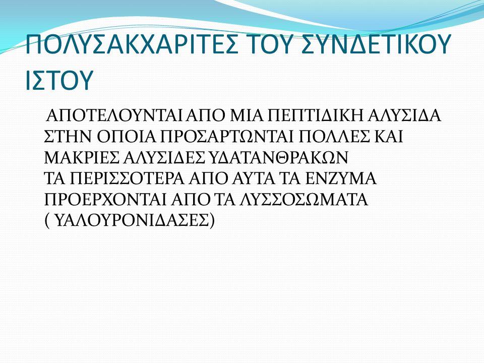 ΑΝΑΤΟΜΙΚΑ ΕΥΡΗΜΑΤΑ ΑΝΑΤΟΜΙΚΗ ΔΙΑΦΟΡΑ ΚΑΤΑΣΚΕΥΗΣ ΣΤΟΥΣ ΑΝΔΡΕΣ ΚΑΙ ΣΤΙΣ ΓΥΝΑΙΚΕΣ ΤΡΙΑ ΕΠΙΠΕΔΑ ΛΙΠΟΥΣ ΜΕ ΔΥΟ ΔΕΣΜΙΔΕΣ ΣΥΝΔΕΤΙΚΟΥ ΙΣΤΟΥ ΣΤΙΣ ΓΥΝΑΙΚΕΣ ΠΙΟ ΛΕΠΤΗ ΕΠΙΔΕΡΜΙΔΑ ΜΕ ΜΕΓΑΛΥΤΕΡΑ ΛΙΠΟΚΥΤΤΑΡΑ ΠΕΡΙΟΧΕΣ ΜΕ ΛΙΠΩΔΗ ΙΣΤΟ ΑΛΛΑΖΟΥΝ ΕΥΚΟΛΑ ΣΧΗΜΑ, ΑΝΑΛΟΓΑ ΜΕ ΤΗΝ ΑΥΞΗΣΗ ΤΩΝ ΛΙΠΟΚΥΤΤΑΡΩΝ