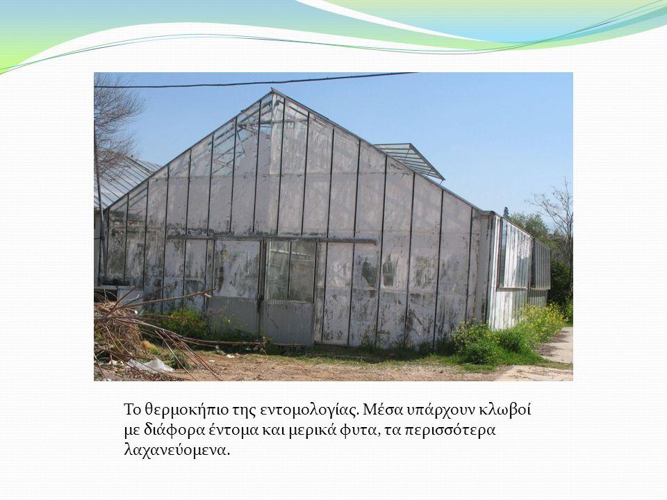 Το θερμοκήπιο της εντομολογίας. Μέσα υπάρχουν κλωβοί με διάφορα έντομα και μερικά φυτα, τα περισσότερα λαχανεύομενα.