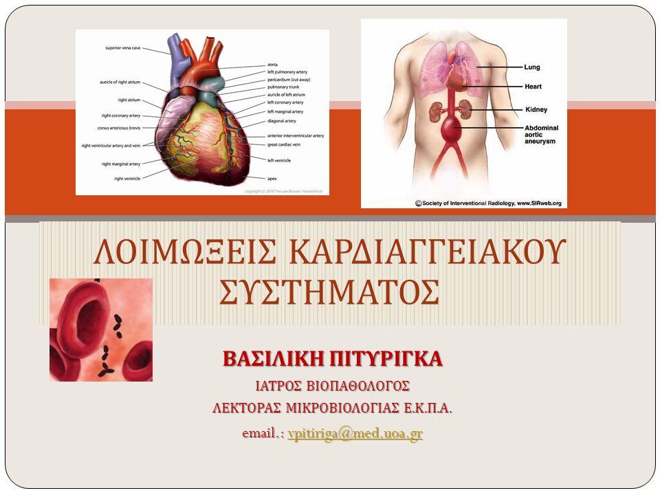 ΒΑΣΙΛΙΚΗ ΠΙΤΥΡΙΓΚΑ ΙΑΤΡΟΣ ΒΙΟΠΑΘΟΛΟΓΟΣ ΛΕΚΤΟΡΑΣ ΜΙΚΡΟΒΙΟΛΟΓΙΑΣ Ε. Κ. Π. Α. email.: vpitiriga@med.uoa.gr vpitiriga@med.uoa.gr ΛΟΙΜΩΞΕΙΣ ΚΑΡΔΙΑΓΓΕΙΑΚΟΥ