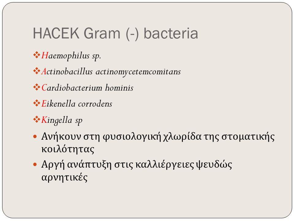 HACEK Gram (-) bacteria  Haemophilus sp.  Actinobacillus actinomycetemcomitans  Cardiobacterium hominis  Eikenella corrodens  Kingella sp Ανήκουν