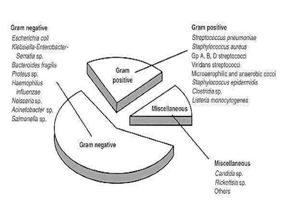Επιπλοκές Η μικροβιαιμία έχει 2 ειδών επιπλοκές : μικροβιολογικές και φλεγμονώδεις Μικροβιολογικές : αποτέλεσμα του πολλαπλασιασμού και της διασποράς των μικροβίων που προκαλούν άμεση βλάβη σε ιστούς και όργανα Φλεγμονώδεις : βλάβη σε ιστούς και όργανα ανεξάρτητα από την παρουσία μικροβίων, αποτέλεσμα απελευθέρωσης μεσολαβητών της φλεγμονής και ενδοκρινικών μεταβολών