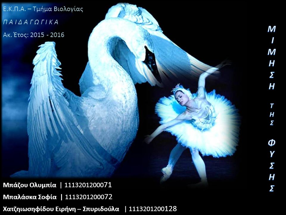 Μπάζου Ολυμπία | 11132012000 71 Μπαλάσκα Σοφία | 11132012000 72 Χατζηιωσηφίδου Ειρήνη – Σπυριδούλα | 1113201200 128 Ε.Κ.Π.Α.